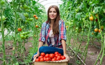 Стартира програмата за млади фермери. Плащат по 25 000 евро на стопанин!