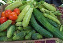 Българските зеленчуци аут от европейските вериги