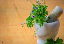 9 от най-мощните билки в природата за крепко здраве!