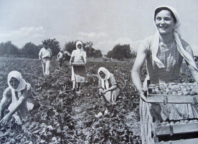 Който не работи, не трябва да яде: Честит празник на труда!