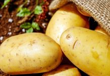 Защо Димитър Димитров реши да раздаде десетки тонове картофи?